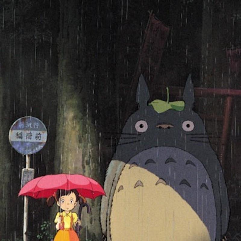 Mon Voisin Totoro - Puzzle Totoro Model B  -  TOTORO - GHIBLI