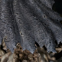 Berserk - Figurine Guts The Black Swordsman - Gecco  - ARTICLES PRECOMMANDE STOCK EPUISE