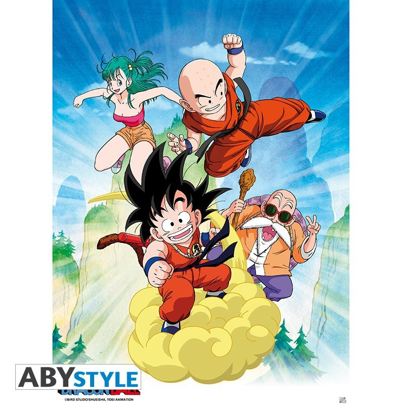 Poster Dragon Ball Groupe  - Goodies DBZ