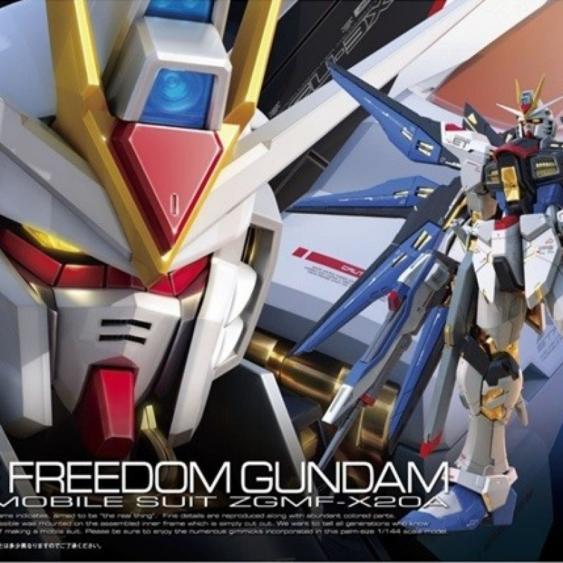 Strike Freedom Gundam RG  -  GUNDAM