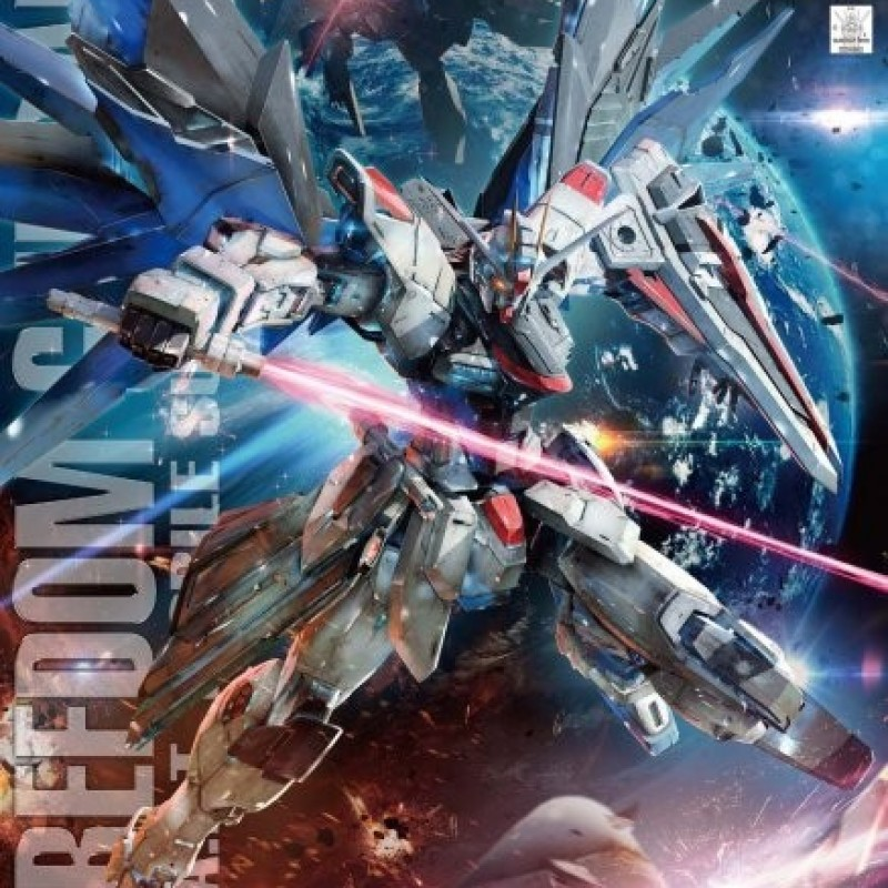 Gundam Freedom MG  -  GUNDAM