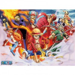 Toile One Piece  -  ONE PIECE