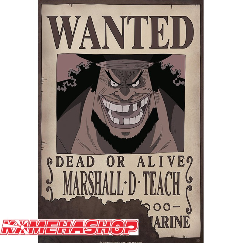 https://www.kamehashop.fr/figurines-one-piece-goodies/10836-one-piece-affiche-wanted-marshall-dteach.html