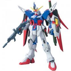 Destiny Gundam HG  -  GUNDAM