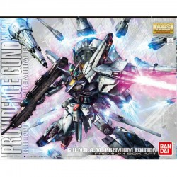 Gundam Providence Premium Edition - MG  -  GUNDAM
